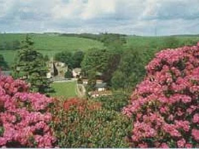 Picture of Blenkinsopp Castle Home Park, Cumbria