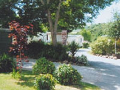 Picture of Little Dinham Woodland Caravan Park, Cornwall