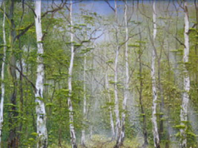 Picture of Silver Birches, Kent