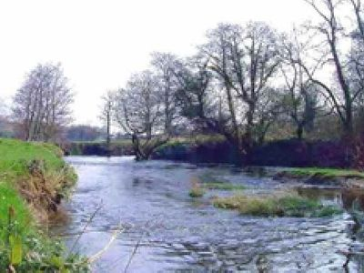 Picture of Willow Park, Carmarthenshire
